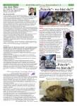 KiEZBLATT Seite 07